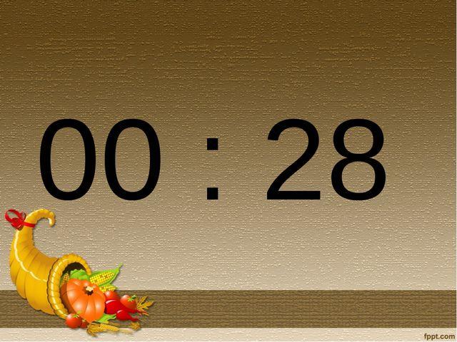 00 : 28