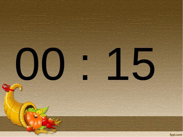 00 : 15