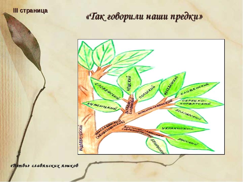 «Так говорили наши предки» III страница «Ветвь» славянских языков