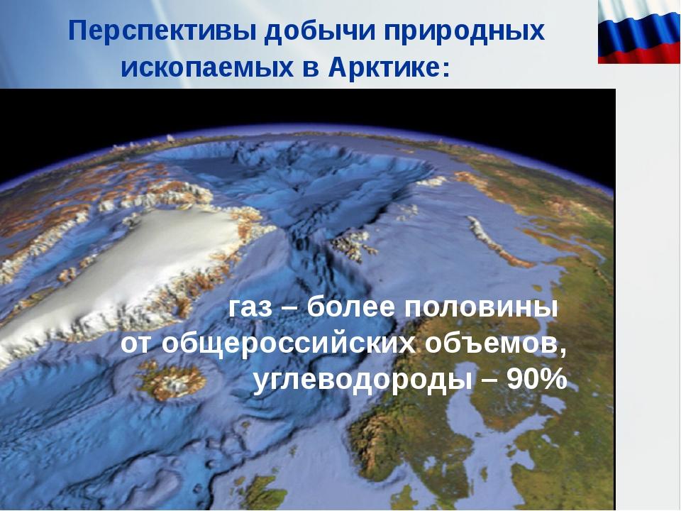 Перспективы добычи природных ископаемых в Арктике: газ – более половины от о...