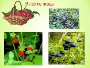 В лес по ягоды