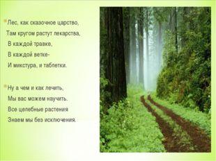 Лес, как сказочное царство, Там кругом растут лекарства, В каждой травке, В к