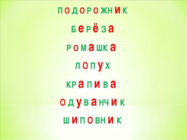 П О Д О Р О ЖН и К Б е Р ё З а Р О М а ШК а Л О П у Х КР а П и В а О Д у В а...