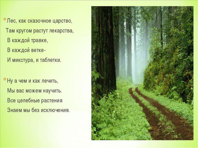Лес, как сказочное царство, Там кругом растут лекарства, В каждой травке, В к...