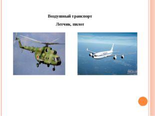 Воздушный транспорт Летчик, пилот