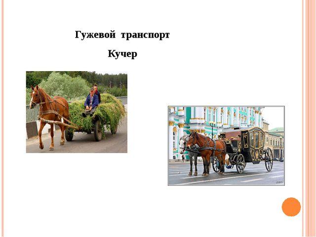 Гужевой транспорт Кучер