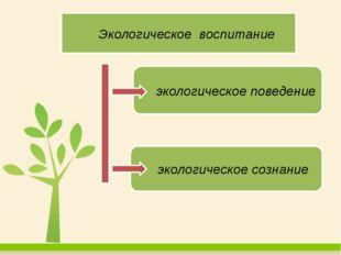 Экологическое воспитание экологическое поведение экологическое сознание