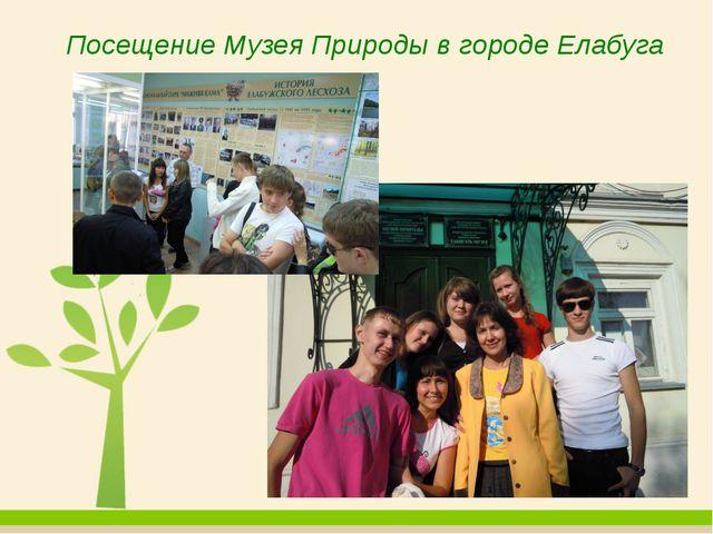 Посещение Музея Природы в городе Елабуга
