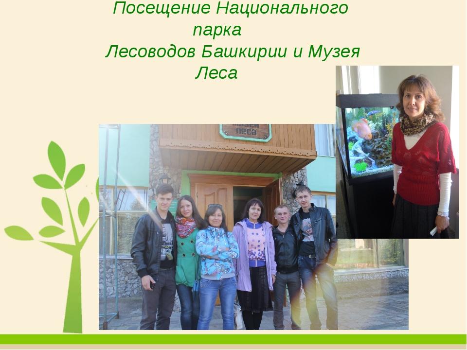 Посещение Национального парка Лесоводов Башкирии и Музея Леса