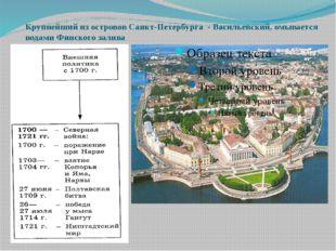 Крупнейший из островов Санкт-Петербурга - Васильевский, омывается водами Финс