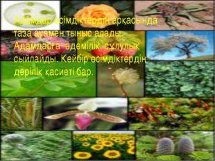 Адамдар өсімдіктердің арқасында таза ауамен тыныс алады. Адамдарға әдемілік,