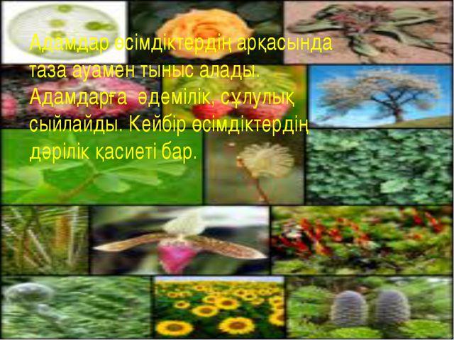 Адамдар өсімдіктердің арқасында таза ауамен тыныс алады. Адамдарға әдемілік,...