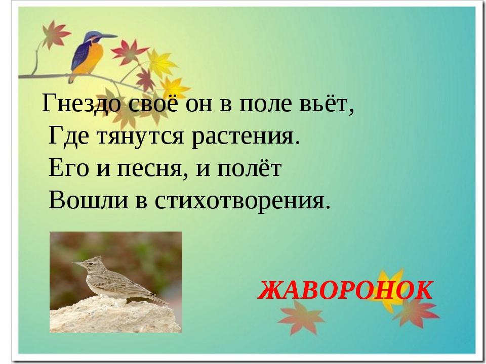 Гнездо своё он в поле вьёт, Где тянутся растения. Его и песня, и полёт Вошли...