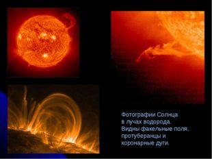 Фотографии Солнца в лучах водорода. Видны факельные поля, протуберанцы и коро