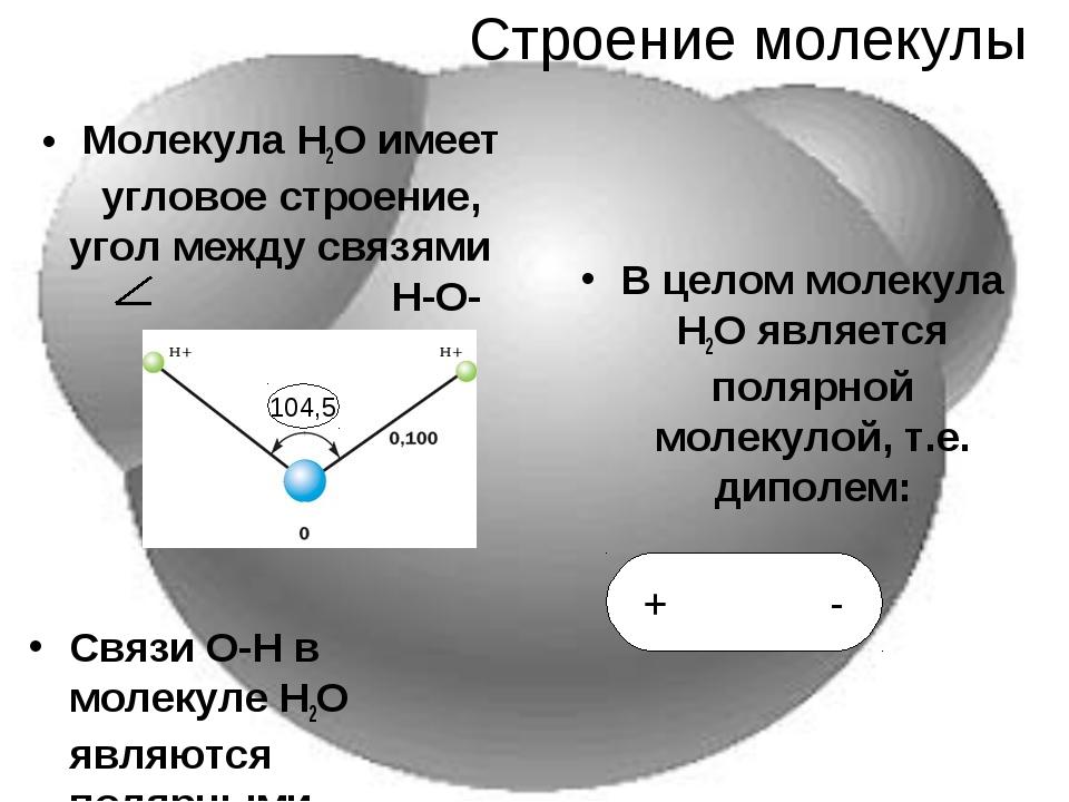 Строение молекулы Молекула Н2О имеет угловое строение, угол между связями Н-О...