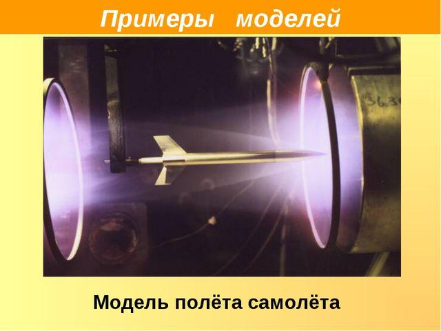 Примеры моделей Модель полёта самолёта
