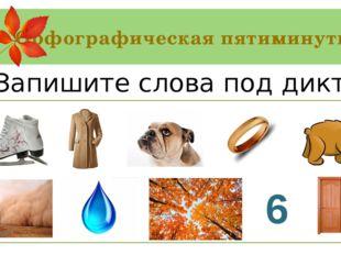 Орфографическая пятиминутка Коньки, пальто, бульдог, кольцо, медведь, пыль, к