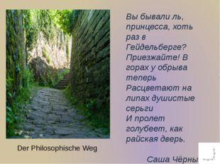 Der Philosophische Weg Вы бывали ль, принцесса, хоть раз в Гейдельберге? Прие