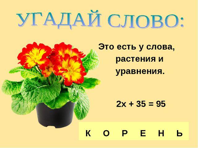 Это есть у слова, растения и уравнения. 2х + 35 = 95 К О Р Е Н Ь