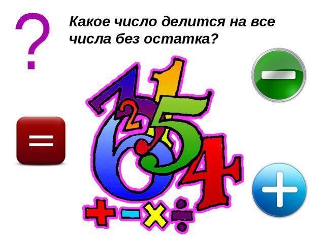 Какое число делится на все числа без остатка?