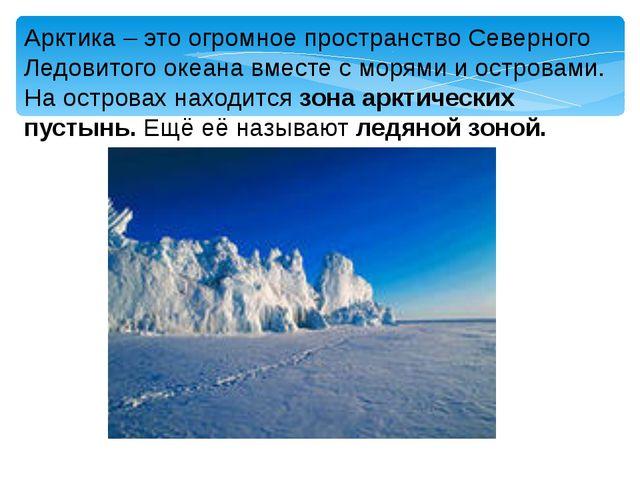 Арктика – это огромное пространство Северного Ледовитого океана вместе с моря...