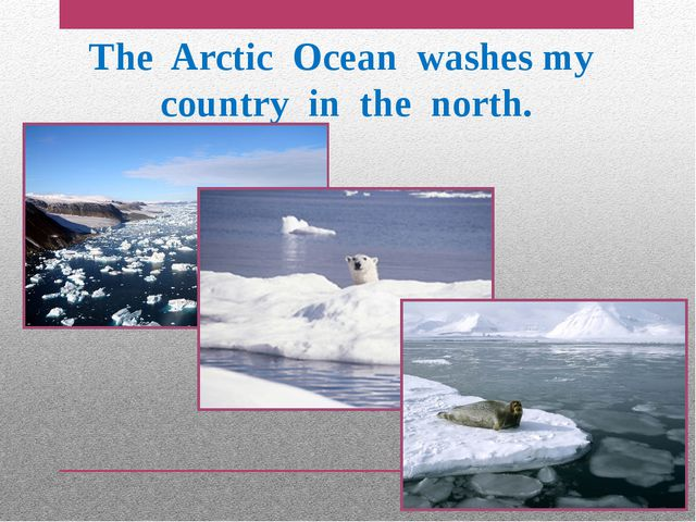 The Arctic Ocean washes my country in the north.