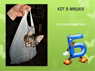 кот в мешке что-то неизвестное
