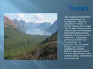 Это обширная территория, располагающиеся на побережьях Северного Ледовитого о