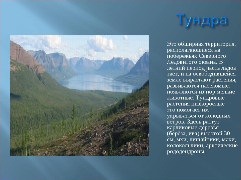 Это обширная территория, располагающиеся на побережьях Северного Ледовитого о...