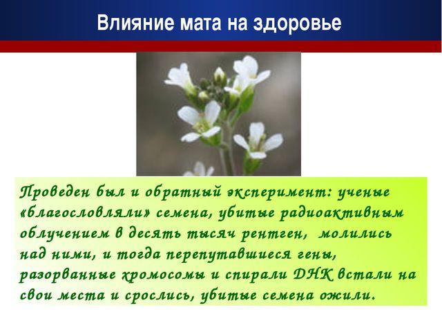 Проведен был и обратный эксперимент: ученые «благословляли» семена, убитые ра...