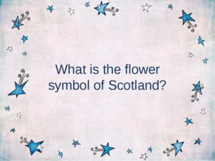 What is the flower symbol of Scotland?