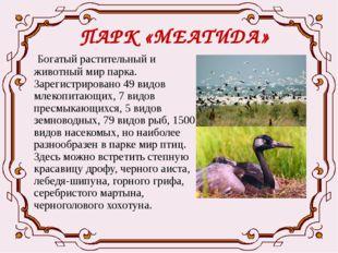 ПАРК «МЕАТИДА» Богатый растительный и животный мир парка. Зарегистрировано 49