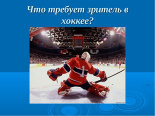Что требует зритель в хоккее?