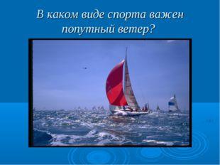 В каком виде спорта важен попутный ветер?