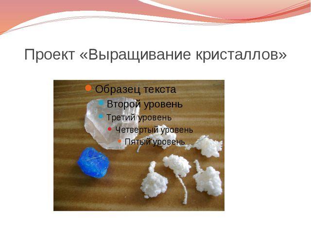 Проект «Выращивание кристаллов»