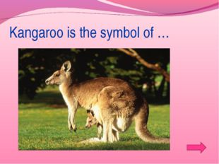 Kangaroo is the symbol of …