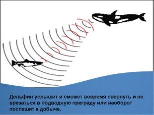 Дельфин услышит и сможет вовремя свернуть и не врезаться в подводную преграду