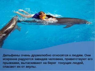 Дельфины очень дружелюбно относятся к людям. Они искренне радуются завидев че