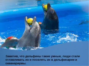 Заметив, что дельфины такие умные, люди стали отлавливать их и поселять их в
