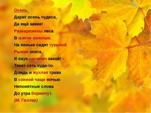 Осень. Дарит осень чудеса, Да ещё какие! Разнаряжены леса В шапки золотые. Н