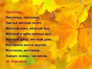Листопад. Листопад, листопад, Листья жёлтые летят. Жёлтый клен, жёлтый бук,