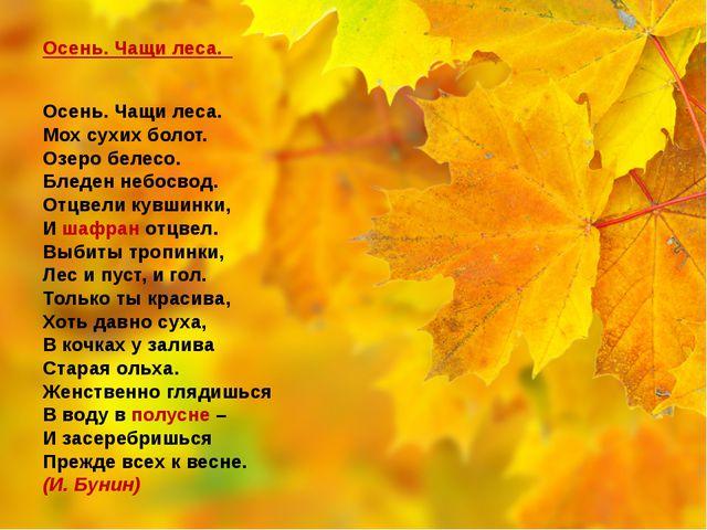 Осень. Чащи леса.  Осень. Чащи леса. Мох сухих болот. Озеро белесо. Блед...