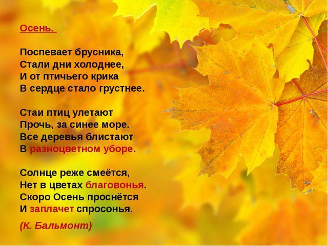 Осень. Поспевает брусника, Стали дни холоднее, И от птичьего крика В сердце...