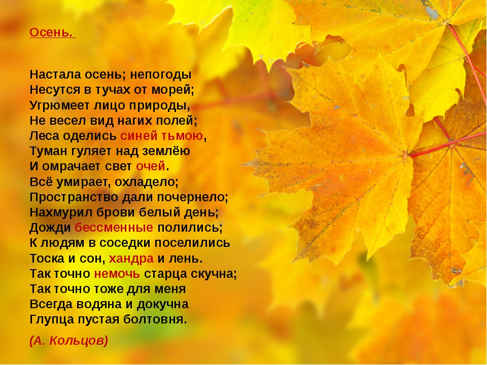 Осень. Настала осень; непогоды Несутся в тучах от морей; Угрюмеет лицо прир...