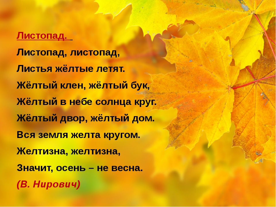 Листопад. Листопад, листопад, Листья жёлтые летят. Жёлтый клен, жёлтый бук,...