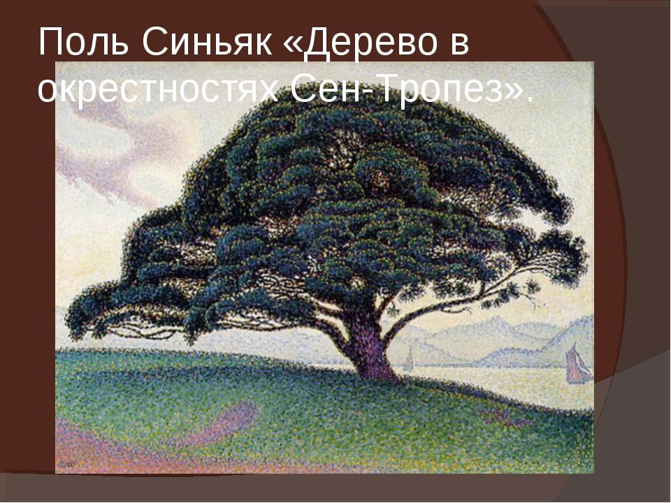 Поль Синьяк «Дерево в окрестностях Сен-Тропез».