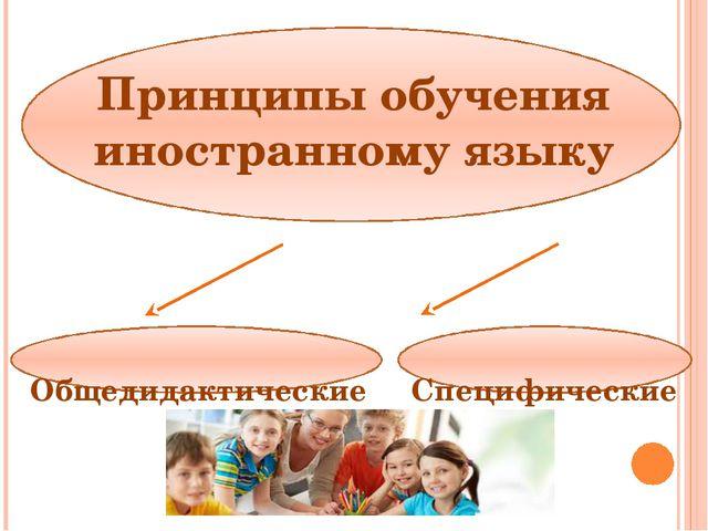 Общедидактические принципы обучения ИЯ Принцип доступноститребует, чтобы мат...