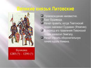 Великие князья Литовские Происхождение неизвестно. Брат Будивида. Начал прави