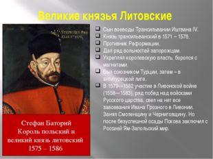 Великие князья Литовские Сын воеводы Трансильвании Иштвана IV. Князь трансиль