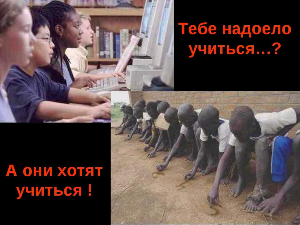 Тебе надоело учиться…? A они хотят учиться !